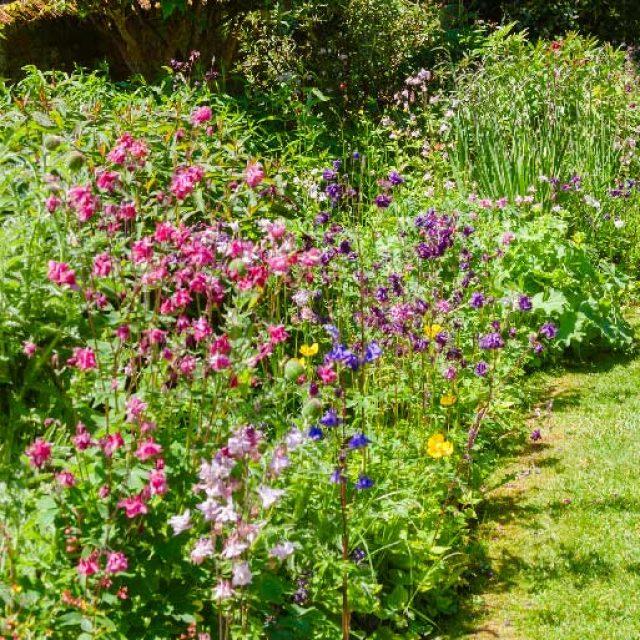 Giardinaggio e benessere