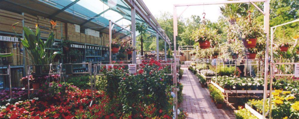 Arredi giardino in manutenzione